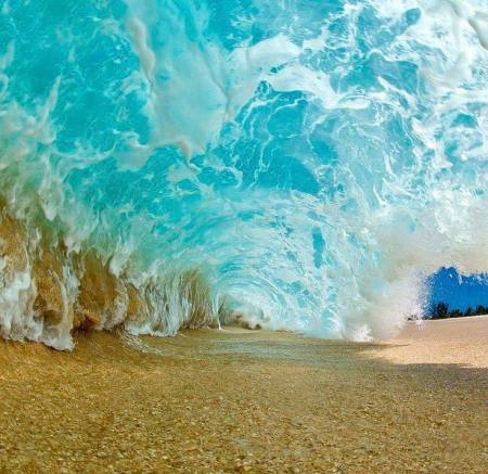 Surf The Wave Of The INNER Net And Leave The Fake Web Behind By Lisa Rising Berry Wave-clear