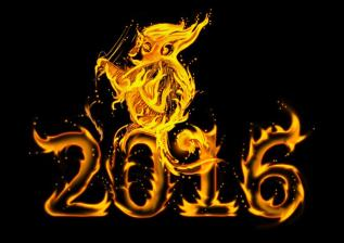 2016 on fire