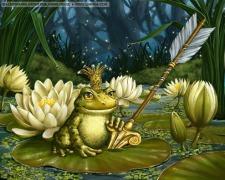 frog-side-linmida